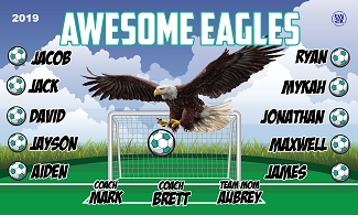 B2446 Awesome Eagles 3x5 Banner