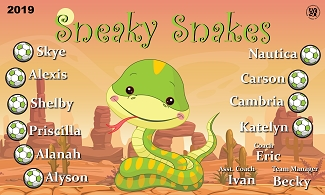 B2487 Sneaky Snakes 3x5 Banner