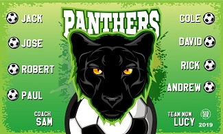 B2509 Green Panthers 3x5 Banner