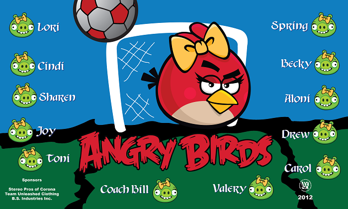 B1002 Angry Birds Girls 3x5 Banner