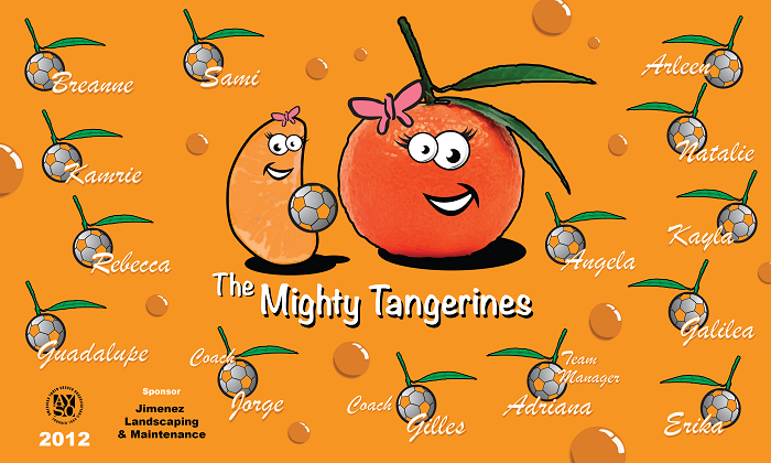 B1206 The Mighty Tangerines 3x5 Banner