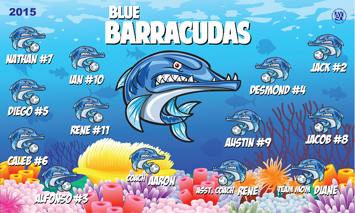 B1248 Barracudas 3x5 Banner