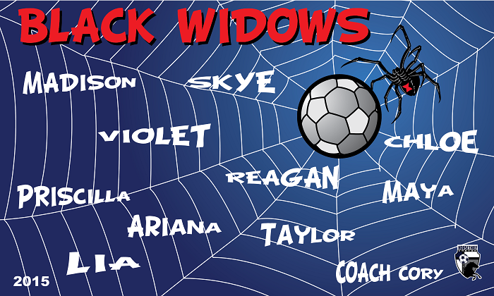 B1017 Black Widow 3x5 Banner