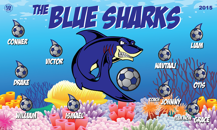 B1259 The Blue Sharks 3x5 Banner