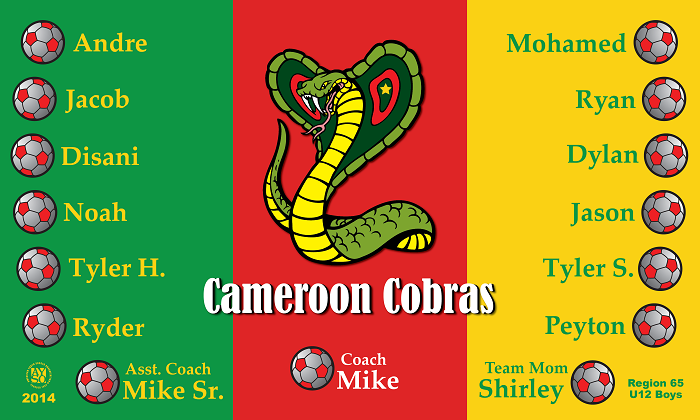 B1029 Cameroon Cobras 3x5 Banner