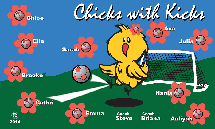B1032 Chicks with kicks 3x5 Banner
