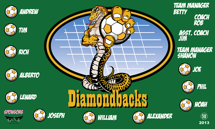 B1044 Diamond Backs 3x5 Banner