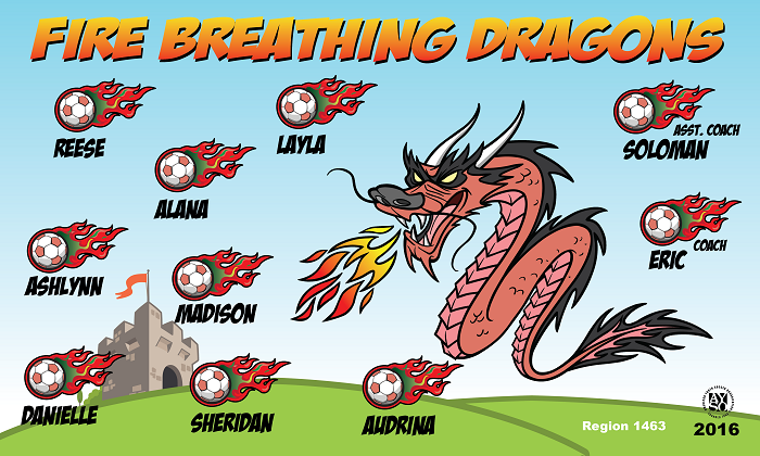 B1439 Fire Breathing Dragons 3x5 Banner
