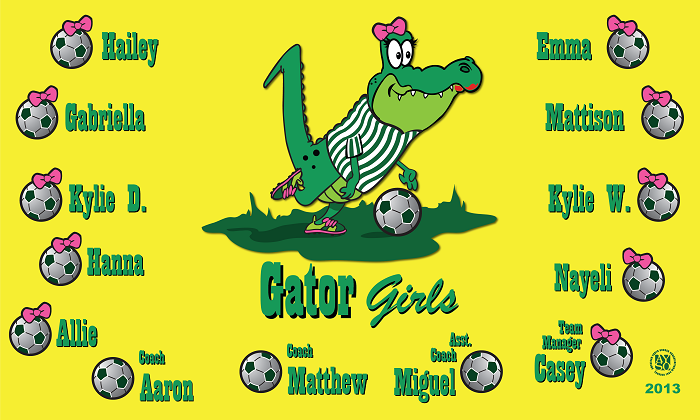 B1071 Gator Girls 3x5 Banner
