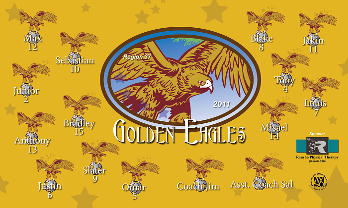 B1078 Golden Eagles 3x5 Banner