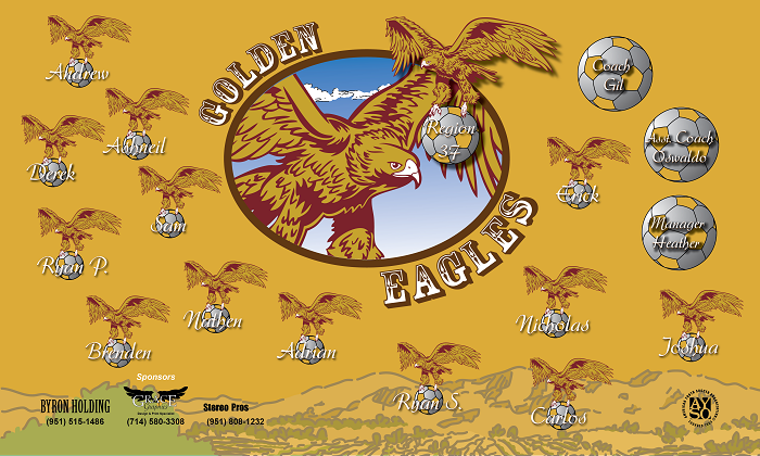 B1077 Golden Eagles 3x5 Banner