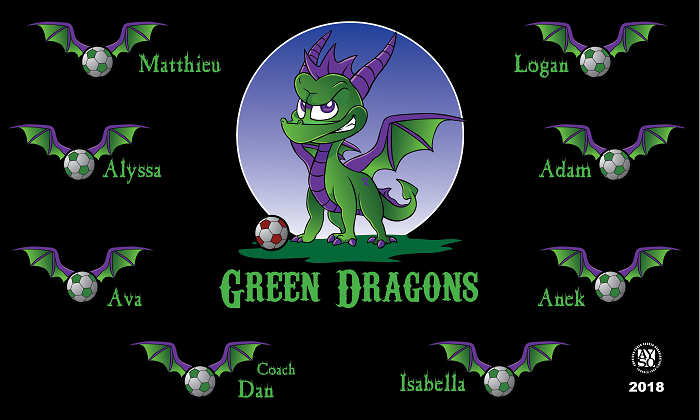 B1083 Green Dragons Spyro 3x5 Banner