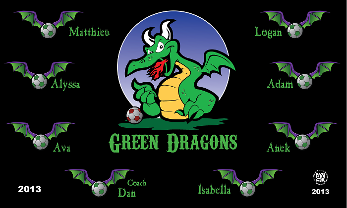 B1082 Green Dragons 3x5 Banner