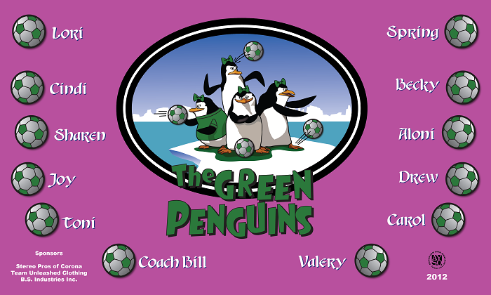 B1129 Penguins 3x5 Banner