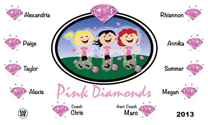 B1130 Pink Diamonds 3x5 Banner