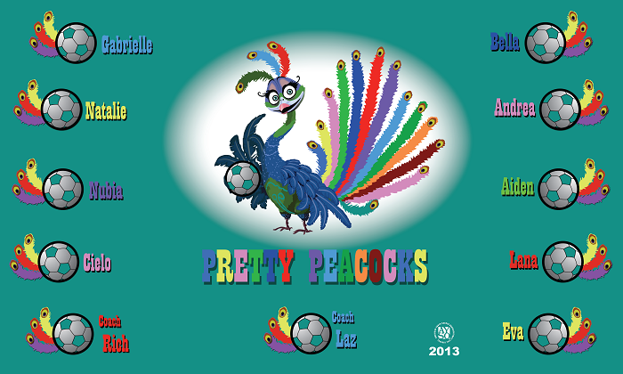 B1141 Pretty Peacocks 3x5 Banner