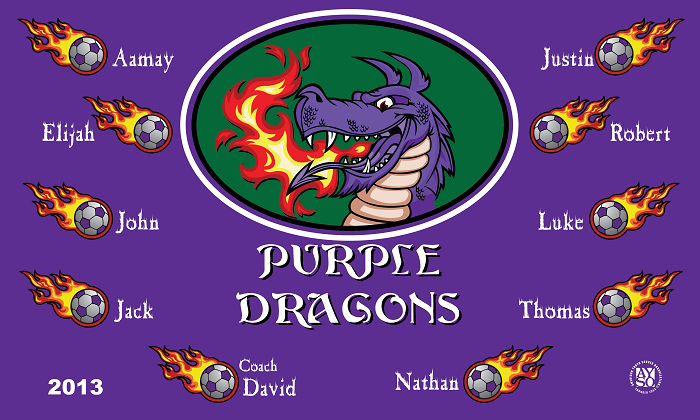 B1142 Purple Dragons 3x5 Banner