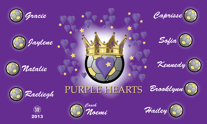 B1143 Purple Hearts 3x5 Banner