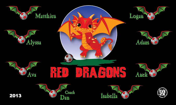 B1508 Red Dragons 3x5 Banner