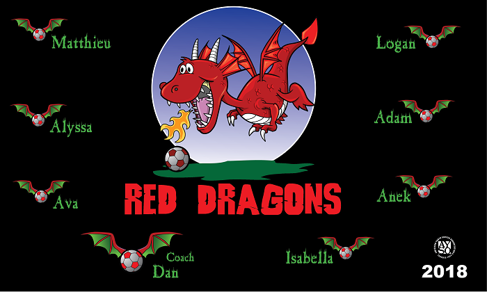 B1441 Red Dragons Fire 3x5 Banner