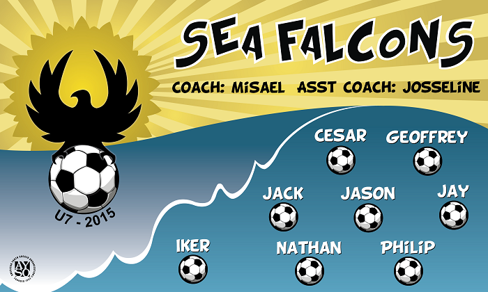 B1321 Sea Falcons 3x5 Banner