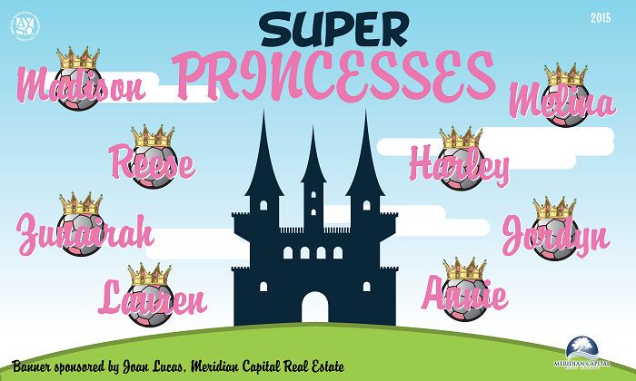 B1335 Super Princesses 3x5 Banner