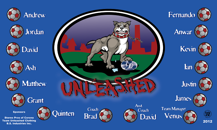 B1190 Unleashed 3x5 Banner