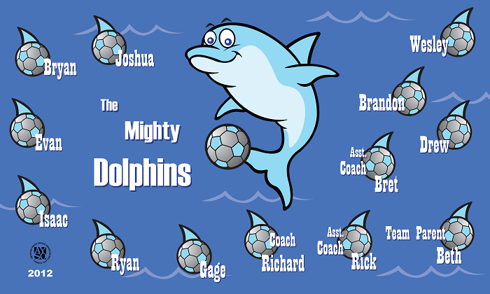 B1204 The Mighty Dolphins 3x5 Banner