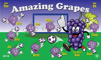 B2382 Amazing Grapes 3x5 Banner