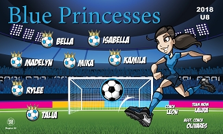 B2383 Blue Princesses 3x5 Banner