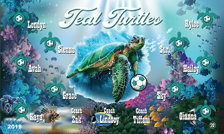 B2399 Teal Turtles 3x5 Banner