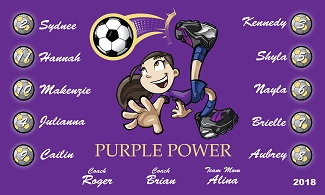 B2403 Purple Power 3x5 Banner