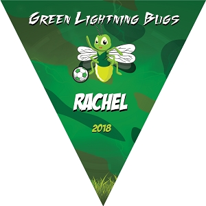 P1009 Green Lightning Bugs Triangle Pennant