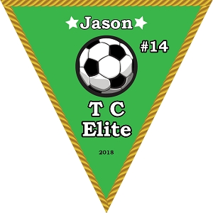 P1013 TC Elite Triangle Pennant