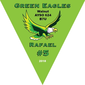 P1017 Green Eagles Triangle Pennant