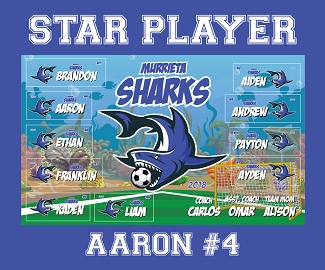 P1034 Murrieta Sharks Mini Banner