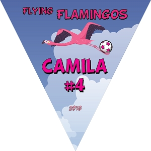 P1048 Flying Flamingos Pennant Triangle