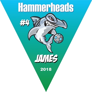 P1058 Hammerheads Triangle Pennant