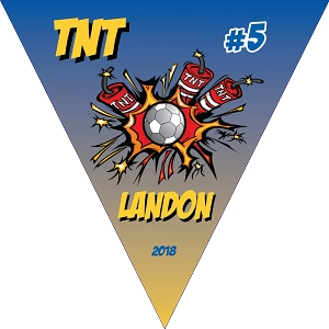 P1061 TNT Triangle Pennant