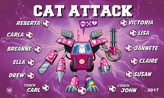 B1764 Cat Attack 3x5 Banner