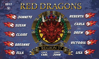 B1769 Red Dragons 3x5 Banner