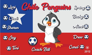 B2222 Chile Penguins 3x5 Banner