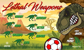 B2283 Lethal Weapons 3x5 Banner
