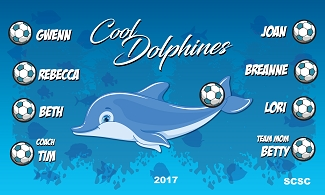 B2293 Cool Dolphins 3x5 Banner