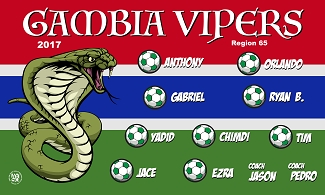 B2327 Gambia Vipers 3x5 Banner