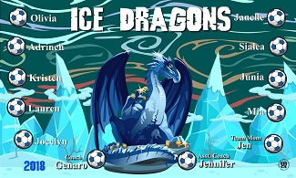 B2364 Ice Dragons 3x5 Banner