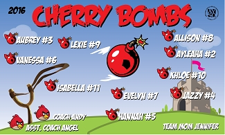 B1832 Cherry Bombs 3x5 Banner