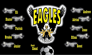 B2122 The Eagles 3x5 Banner