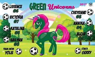 B2073 Green Unicorns 3x5 Banner