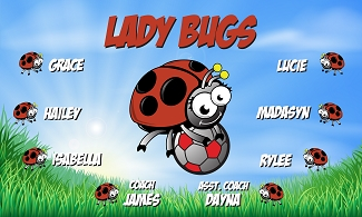 B2127 Lady Bugs 3x5 Banner
